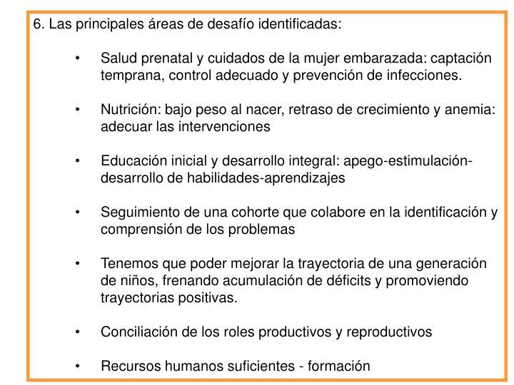 6. Las principales reas de desafo identificadas: