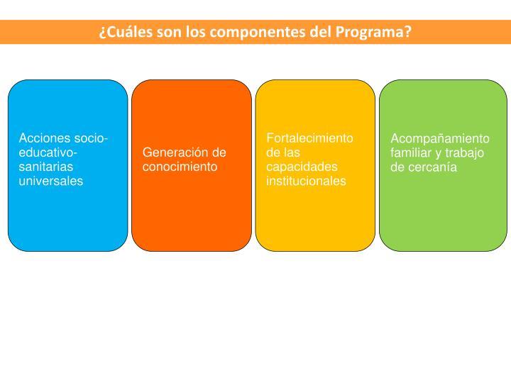 Cules son los componentes del Programa?