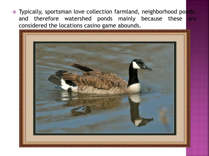 Typically, sportsman love collection farmland, neighborhood ponds, and therefore watershed ponds mai...
