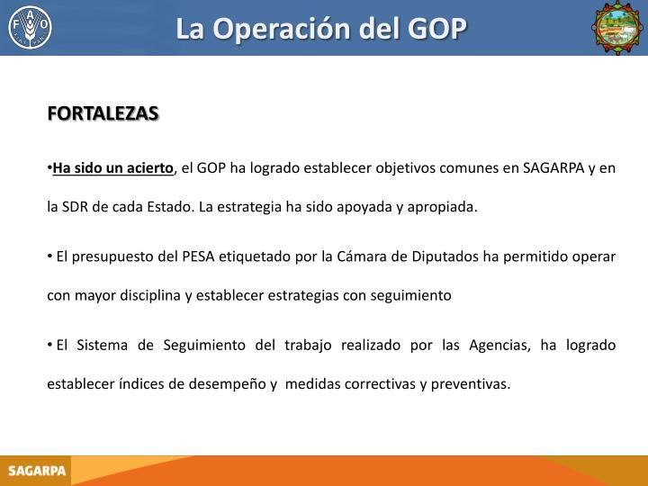 La Operación del GOP