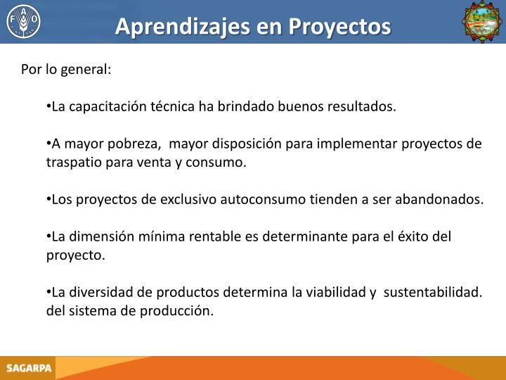 Aprendizajes en Proyectos