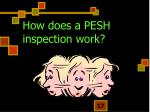 how does a pesh inspection work