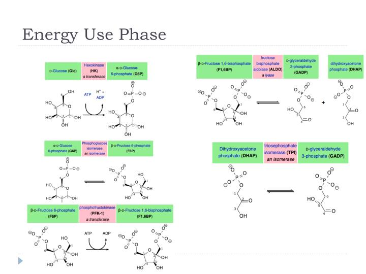 Energy Use Phase