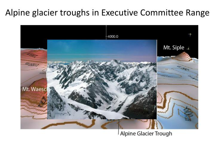 Alpine glacier troughs in Executive Committee Range