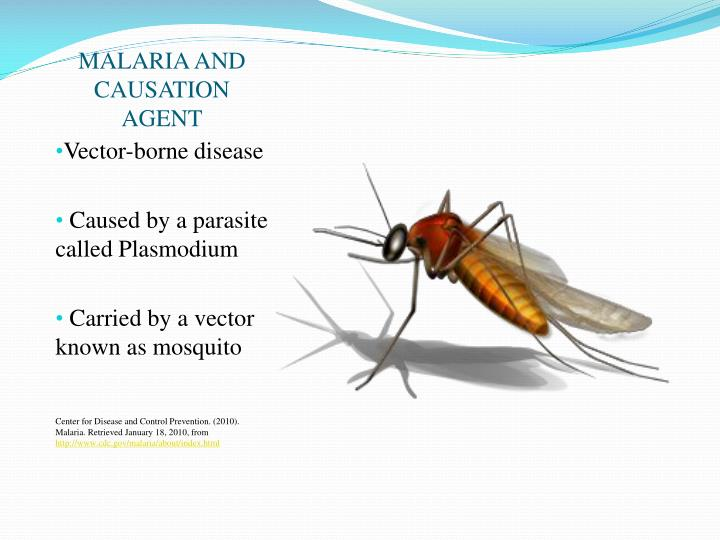 MALARIA AND CAUSATION AGENT
