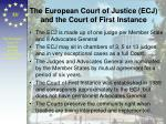 the european court of justice ecj and the court of first instance
