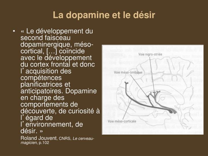 La dopamine et le désir