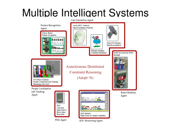 Multiple Intelligent Systems