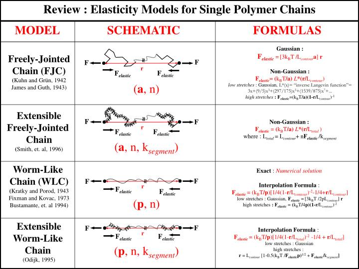 Review : Elasticity Models for Single Polymer Chains