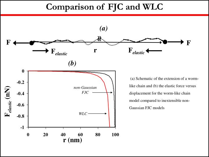 Comparison of FJC and WLC