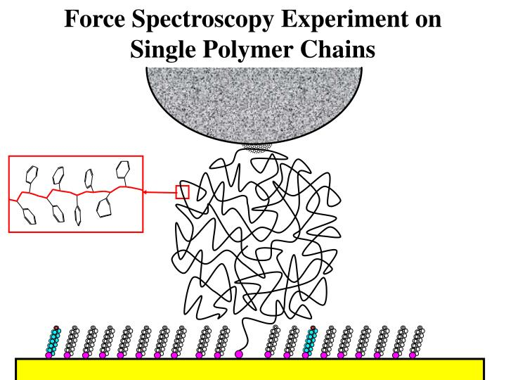 Force Spectroscopy Experiment on