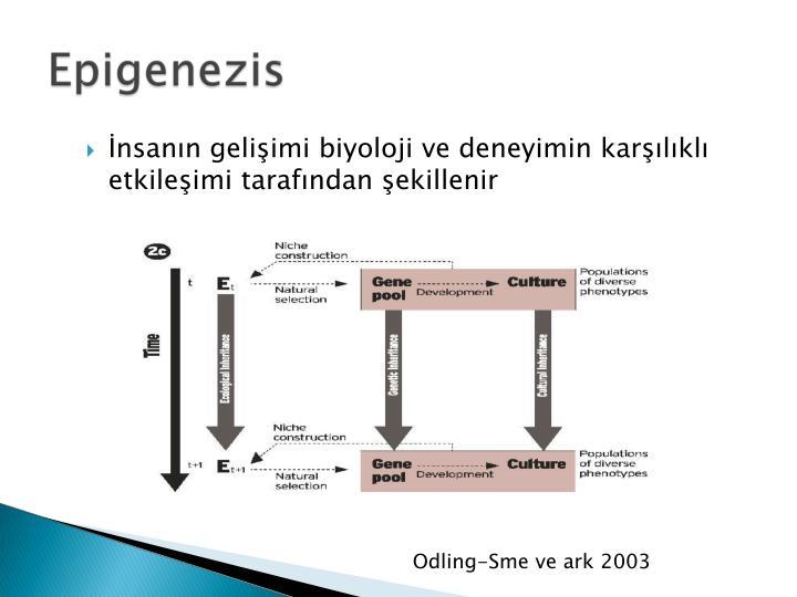 Odling-Sme ve ark 2003