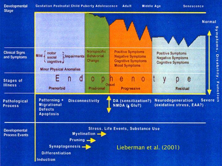 Lieberman et al. (2001)
