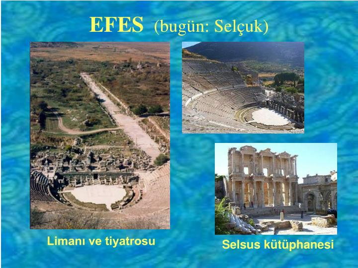 Efes bug n sel uk