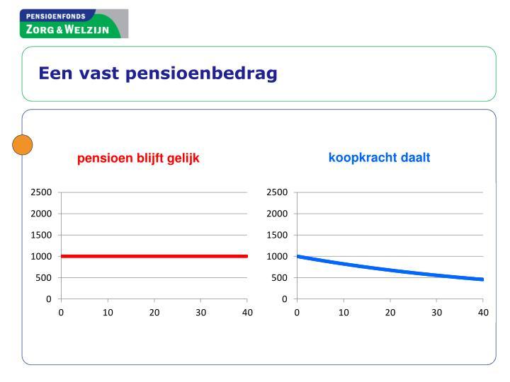 Een vast pensioenbedrag