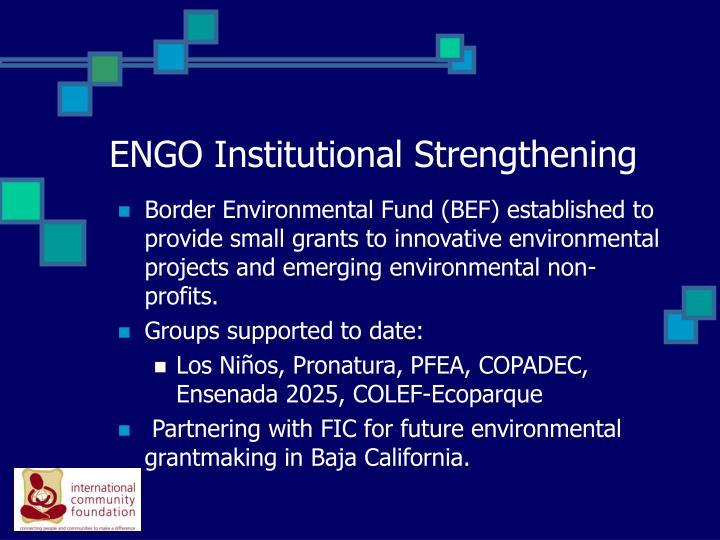 ENGO Institutional Strengthening