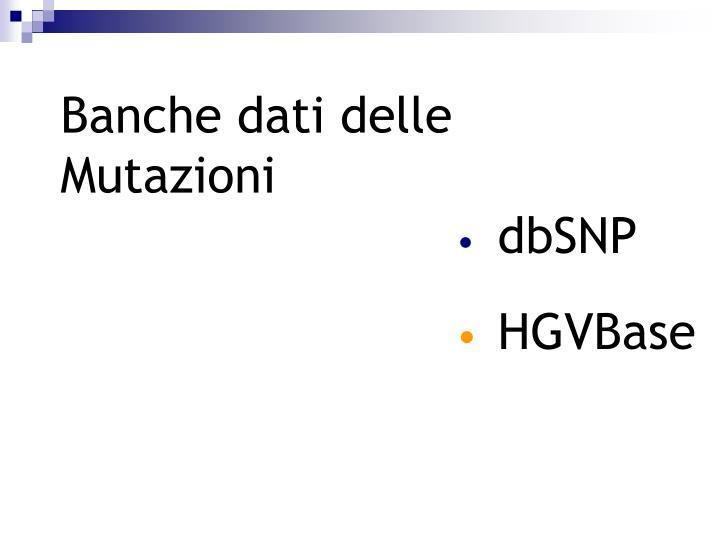 Banche dati delle