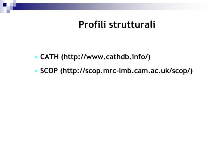 Profili strutturali