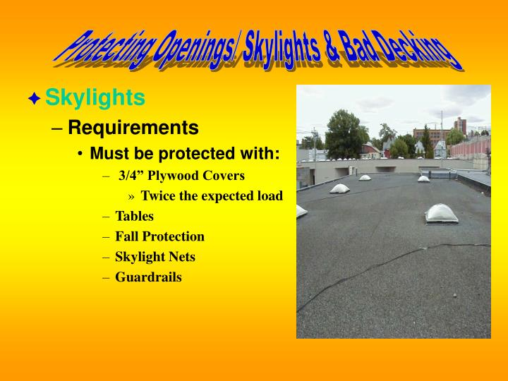 Protecting Openings/ Skylights & Bad Decking