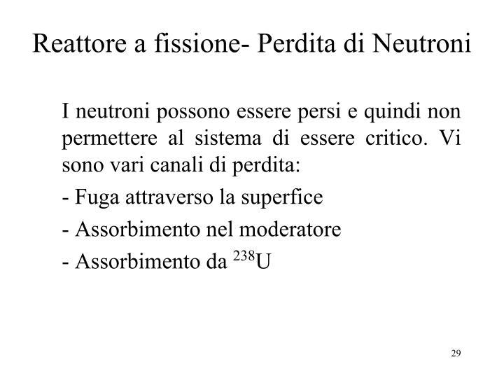 Reattore a fissione- Perdita di Neutroni