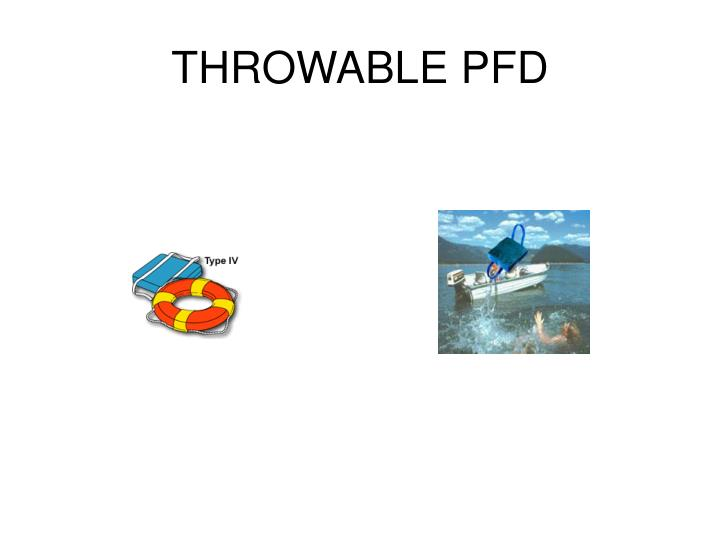 THROWABLE PFD