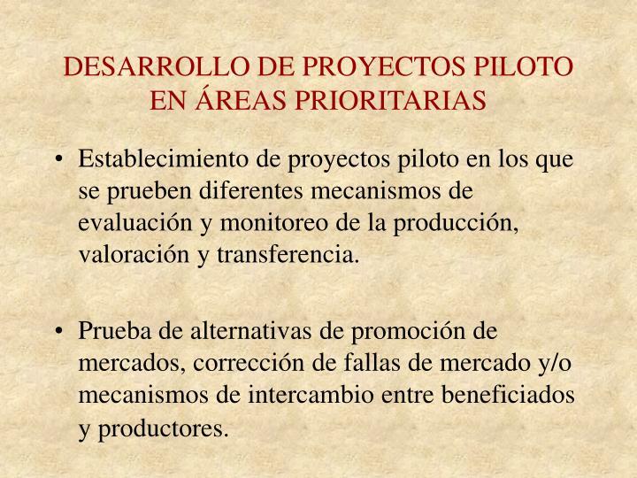 DESARROLLO DE PROYECTOS PILOTO EN ÁREAS PRIORITARIAS