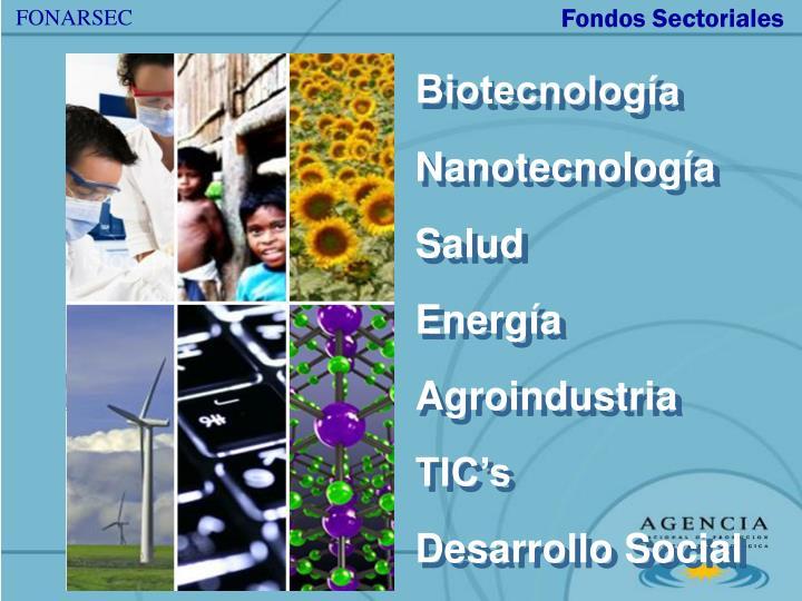 Fondos Sectoriales