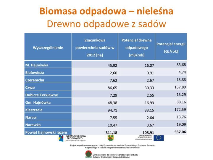 Biomasa odpadowa – nieleśna