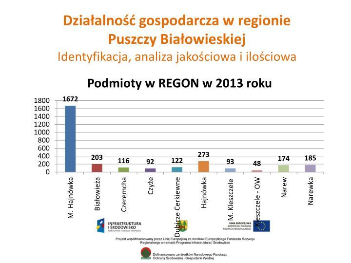 Działalność gospodarcza w regionie