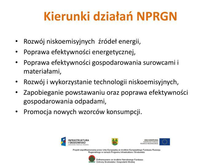 Kierunki działań NPRGN