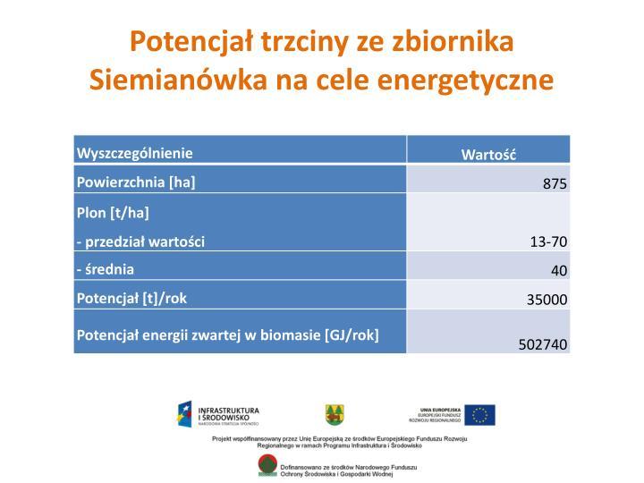 Potencjał trzciny ze zbiornika Siemianówka na cele energetyczne