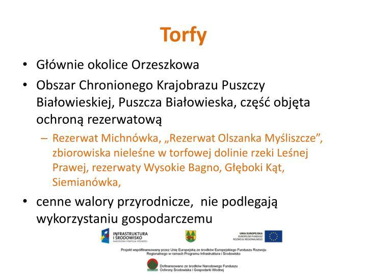 Torfy