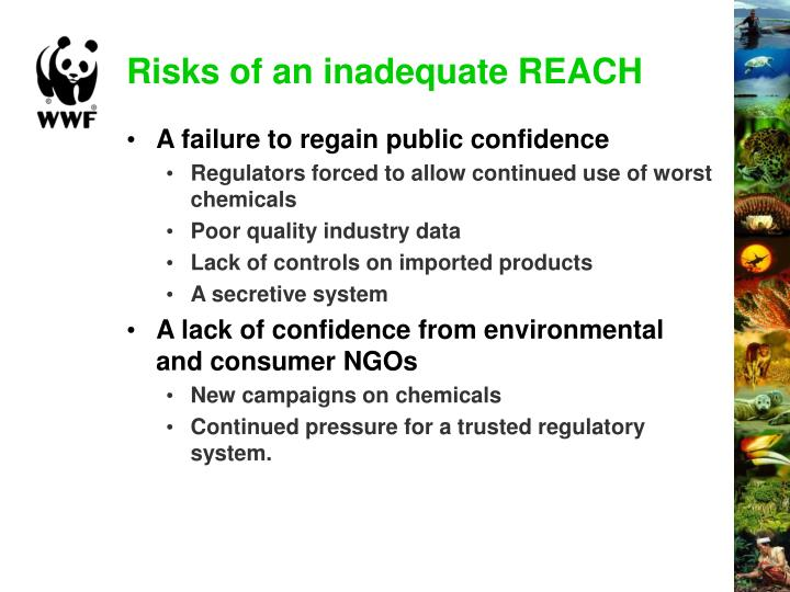 Risks of an inadequate REACH