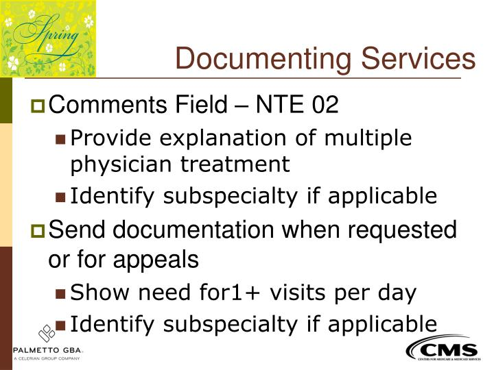Documenting Services