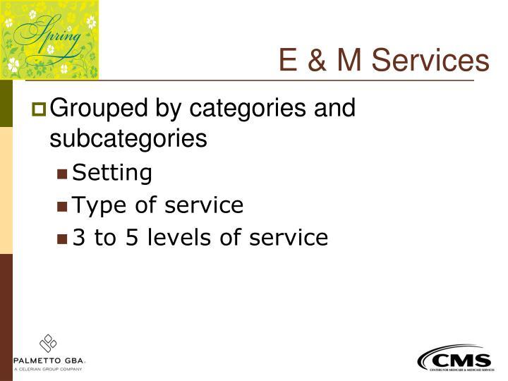 E & M Services
