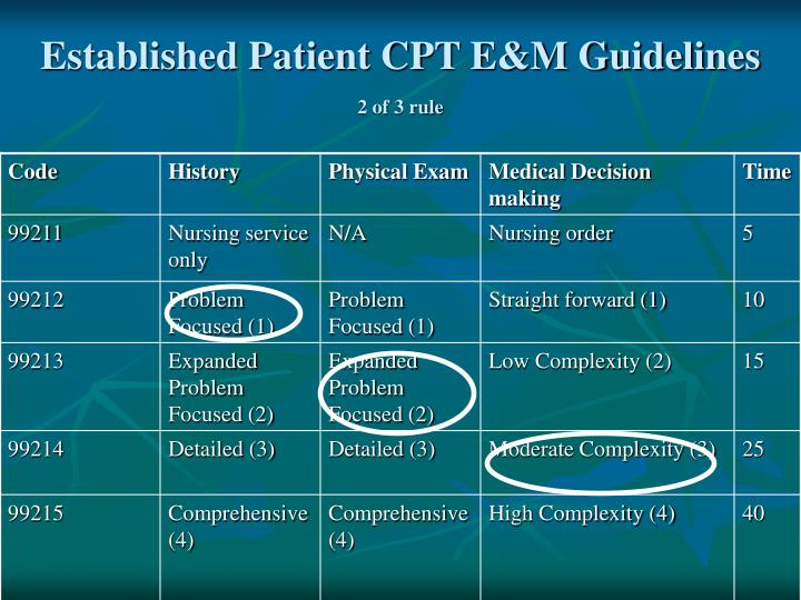 Established Patient CPT E&M Guidelines