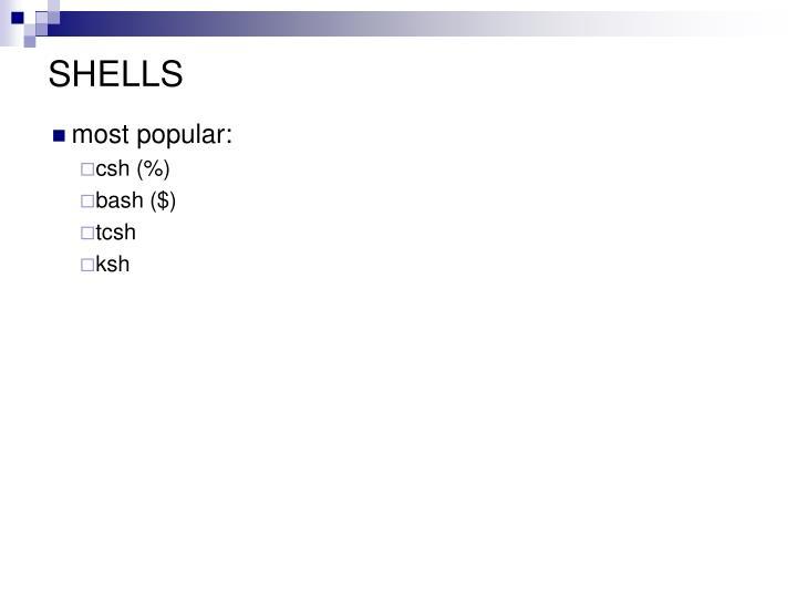 most popular: