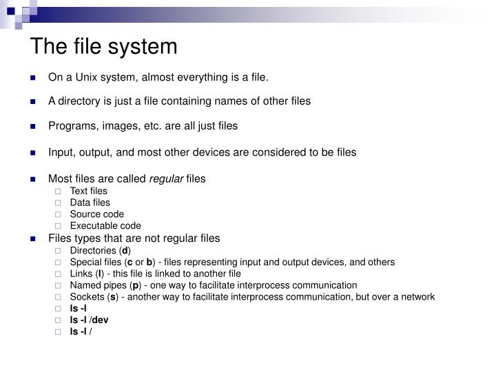 The file system