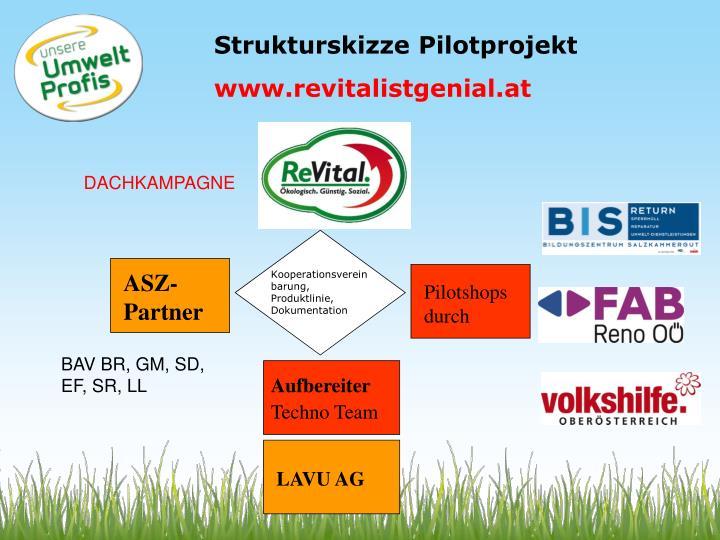 Strukturskizze Pilotprojekt
