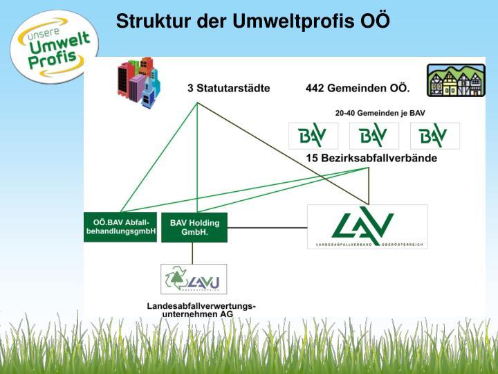 Struktur der Umweltprofis OÖ
