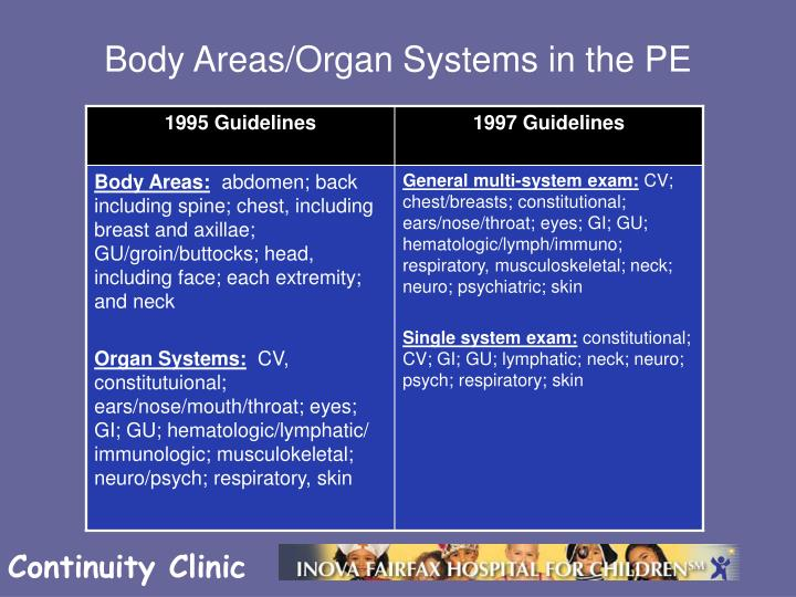 Body Areas/Organ Systems in the PE