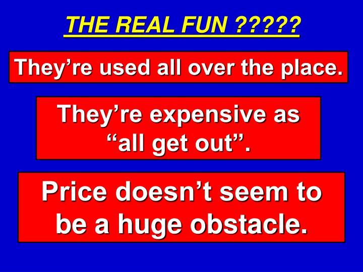 THE REAL FUN ?????