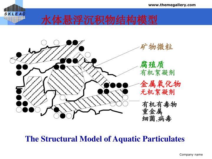 水体悬浮沉积物结构模型