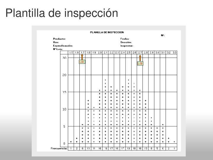 Plantilla de inspección