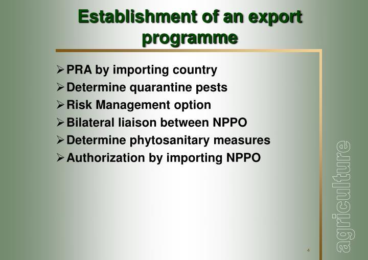 Establishment of an export programme