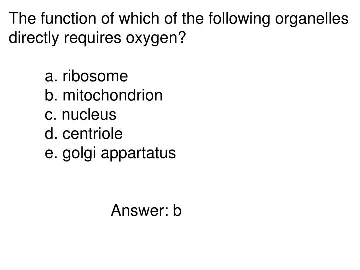 The function of which of the following organelles