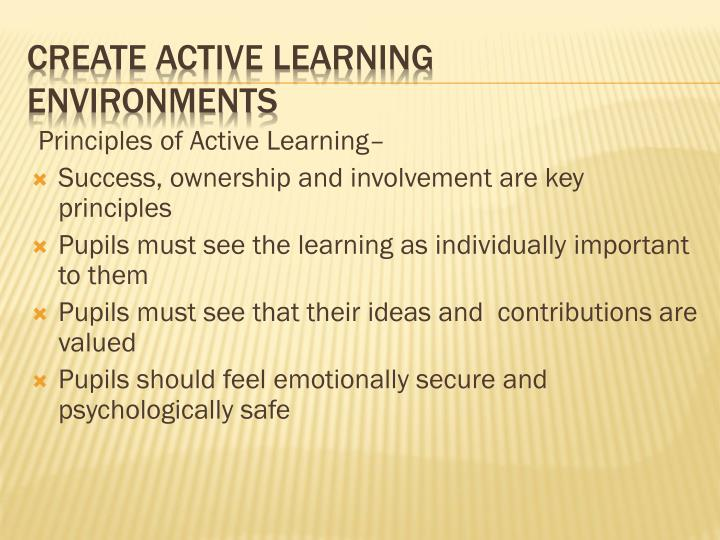 Principles of Active Learning–