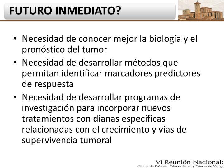 Necesidad de conocer mejor la biología y el pronóstico del tumor
