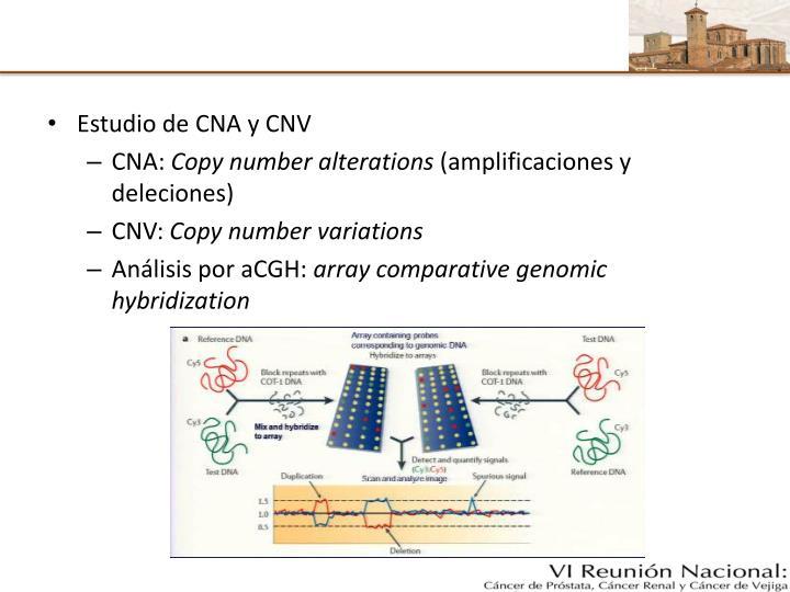 Estudio de CNA y CNV