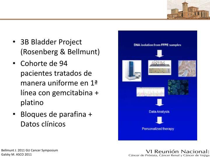 3B Bladder Project (Rosenberg & Bellmunt)